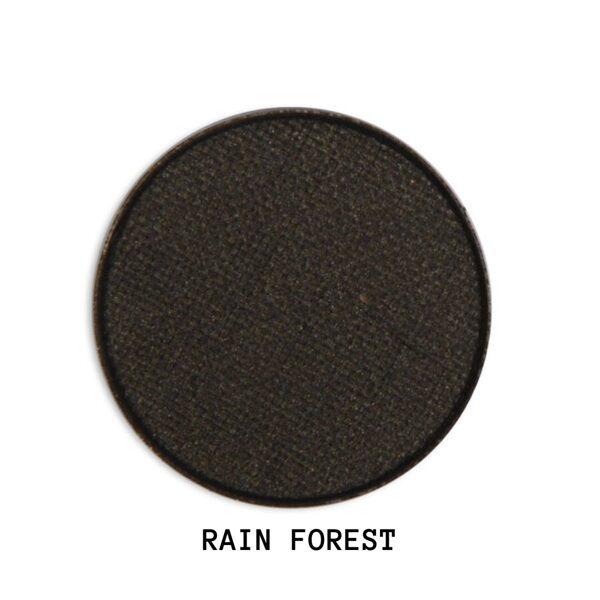 #RAIN FOREST